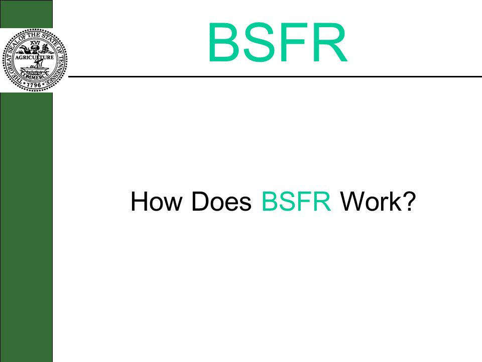BSFR How Does BSFR Work