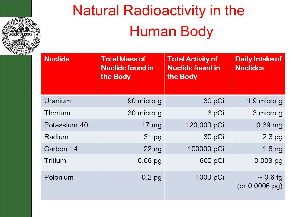Human Body Natural Radioactivity in the Nuclide