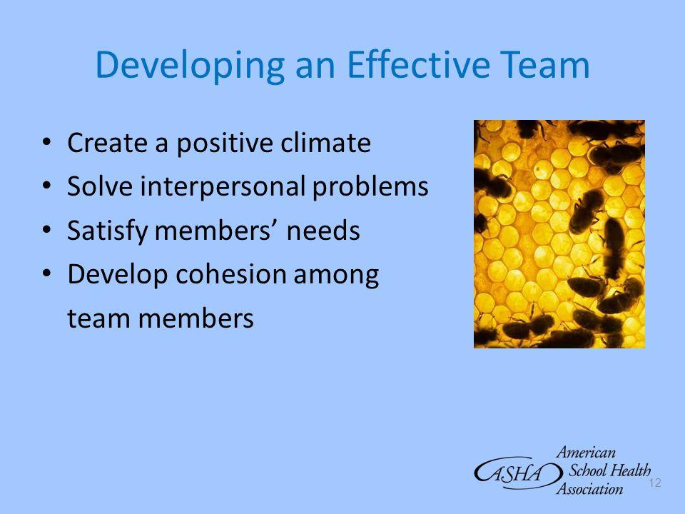 Developing an Effective Team