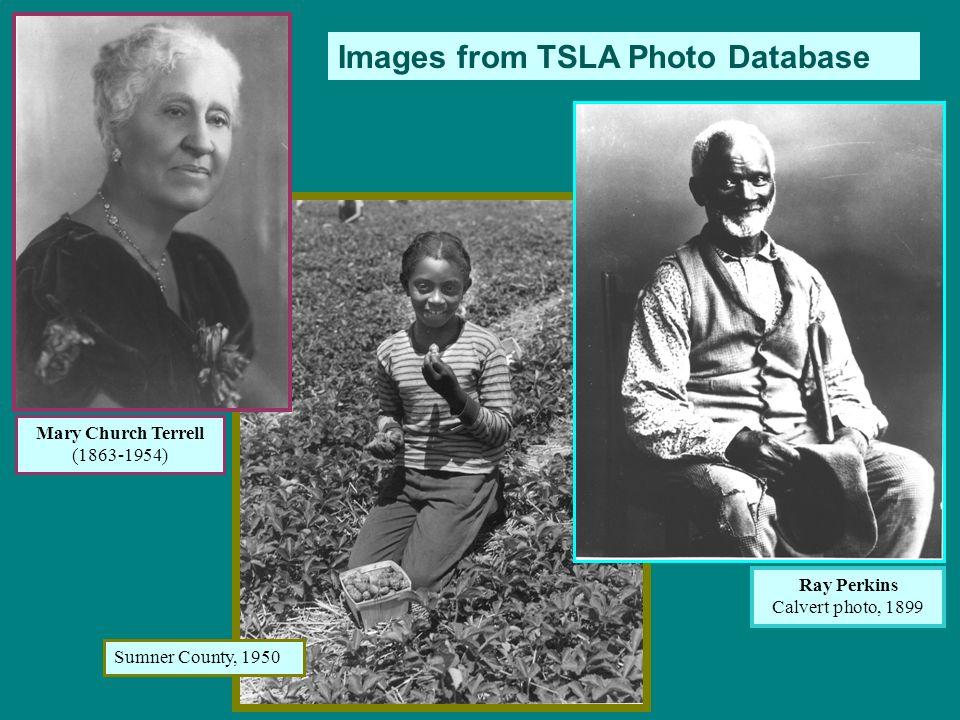 Images from TSLA Photo Database