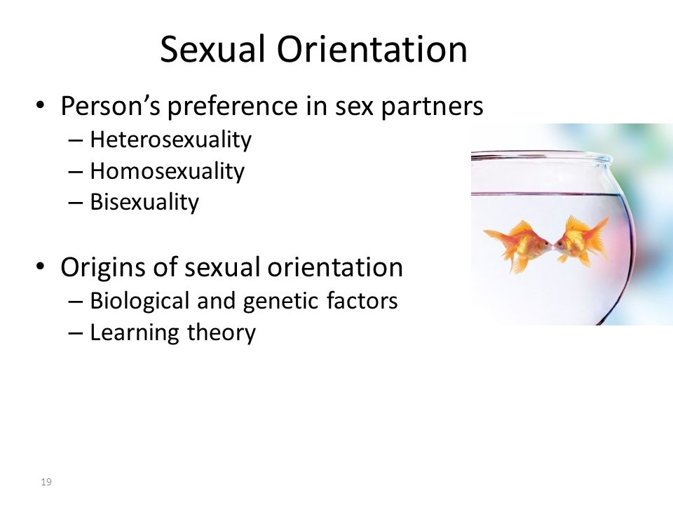 Sexual Orientation Person's preference in sex partners