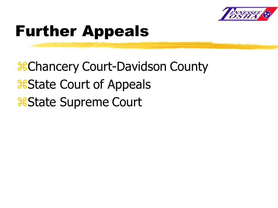 Further Appeals Chancery Court-Davidson County State Court of Appeals