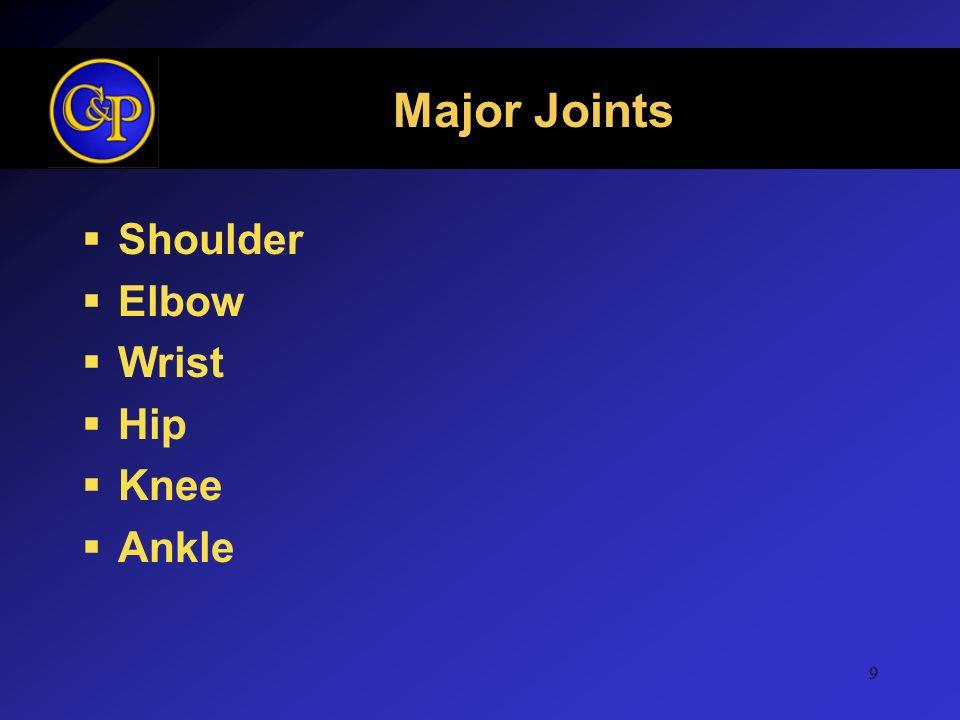 Major Joints Shoulder Elbow Wrist Hip Knee Ankle