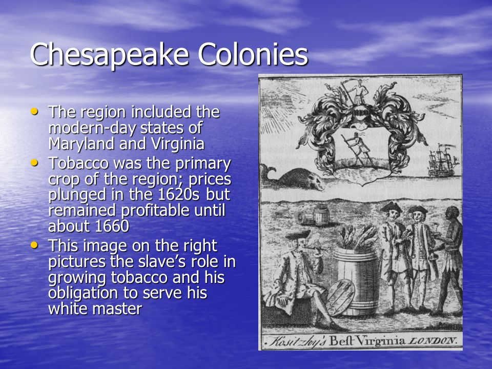 Chesapeake Colonies The region included the modern-day states of Maryland and Virginia.