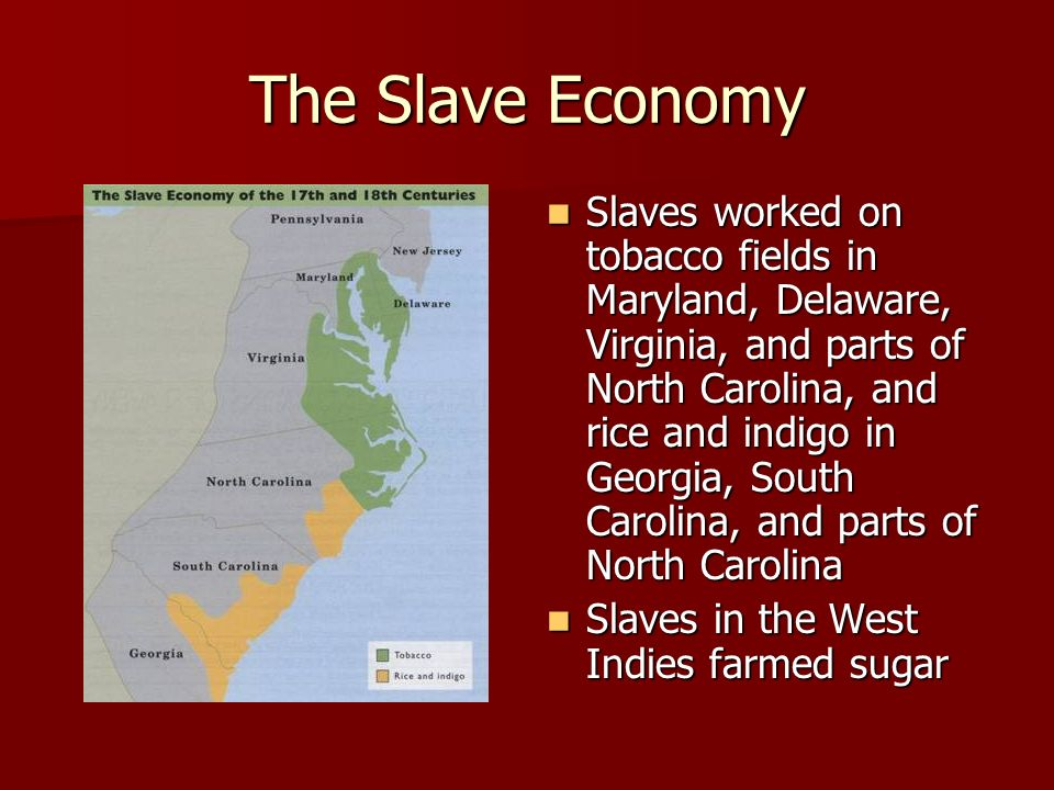 The Slave Economy