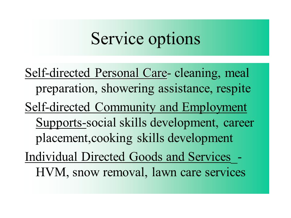 Service options Self-directed Personal Care- cleaning, meal preparation, showering assistance, respite.
