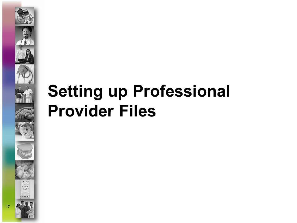 Setting up Professional Provider Files