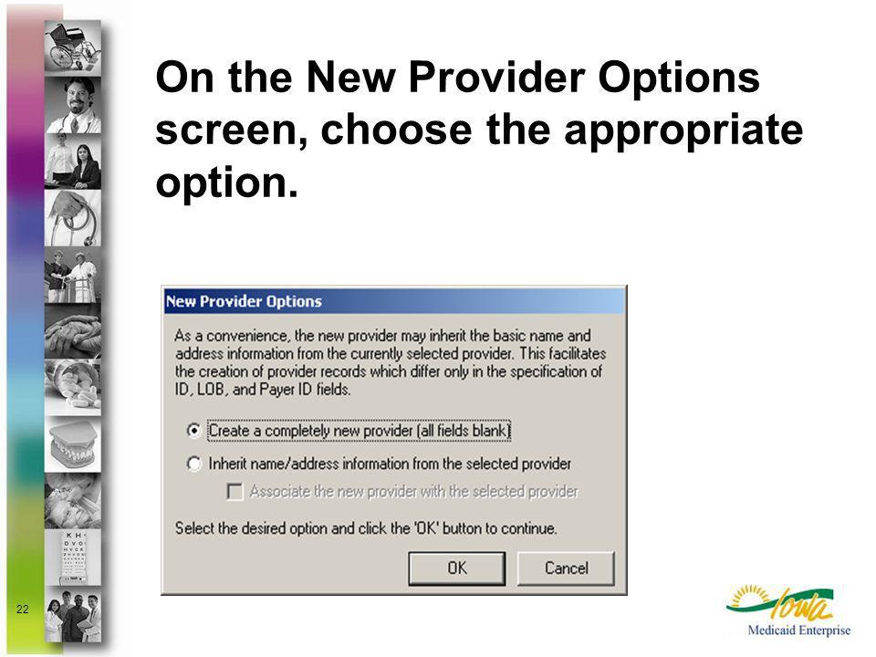 On the New Provider Options screen, choose the appropriate option.
