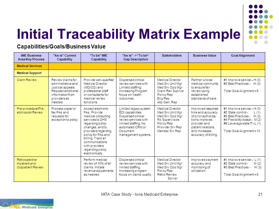 Initial Traceability Matrix Example