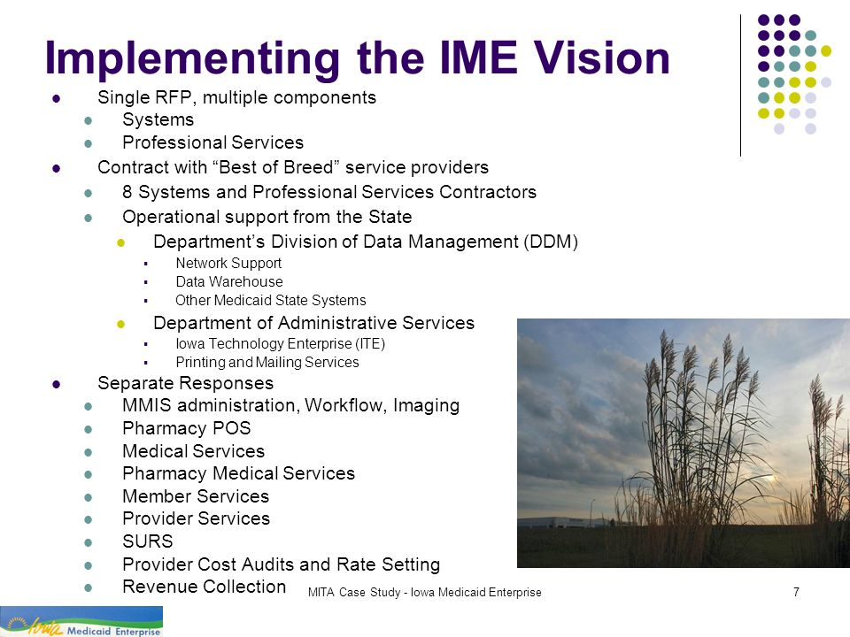 Implementing the IME Vision