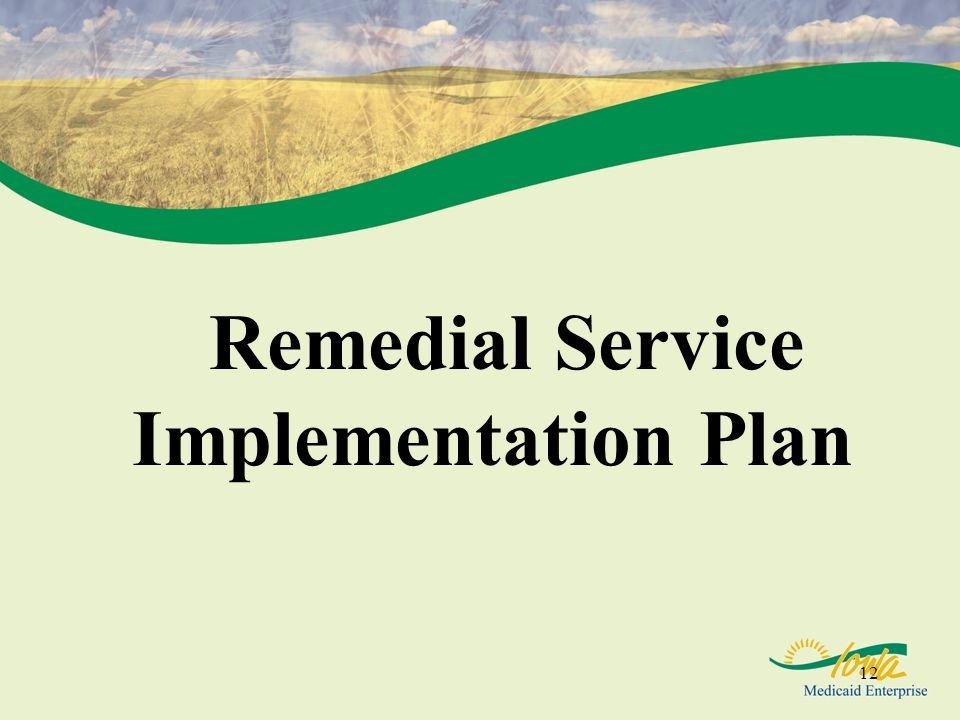 Remedial Service Implementation Plan