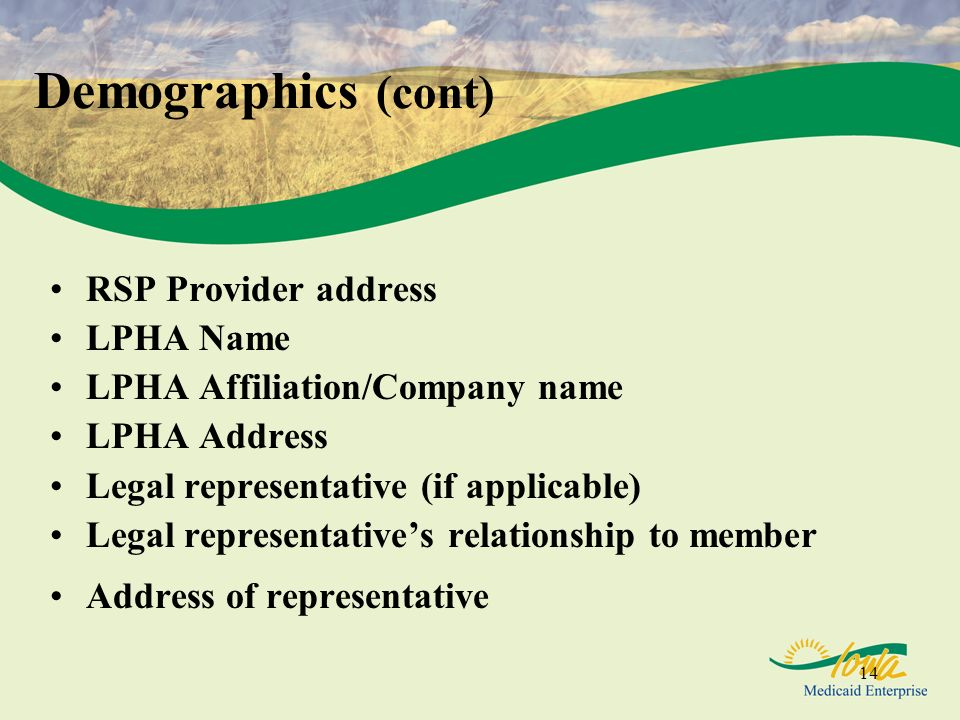 Demographics (cont) RSP Provider address LPHA Name
