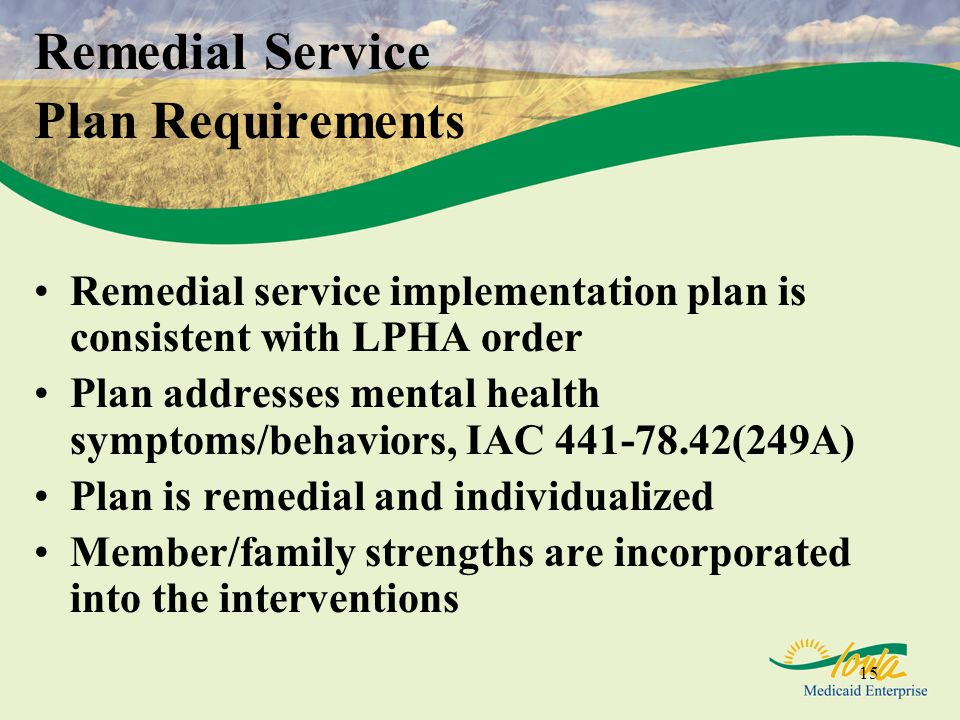 Remedial Service Plan Requirements