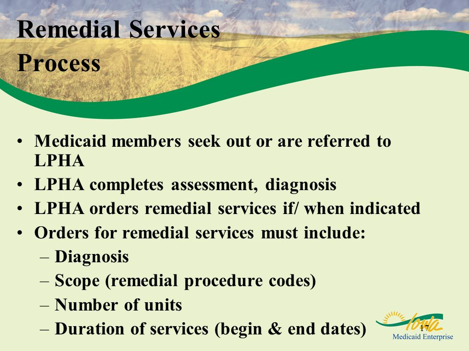 Remedial Services Process