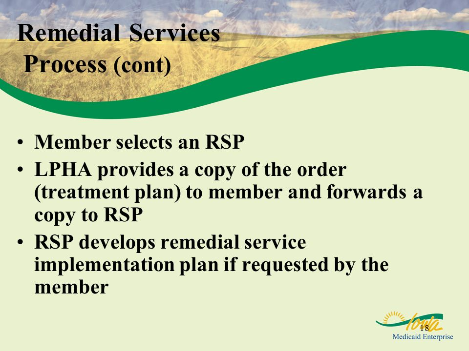 Remedial Services Process (cont)