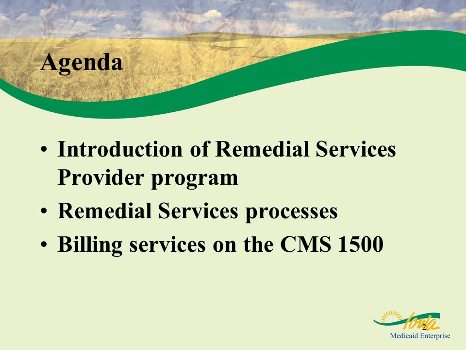 Agenda Introduction of Remedial Services Provider program