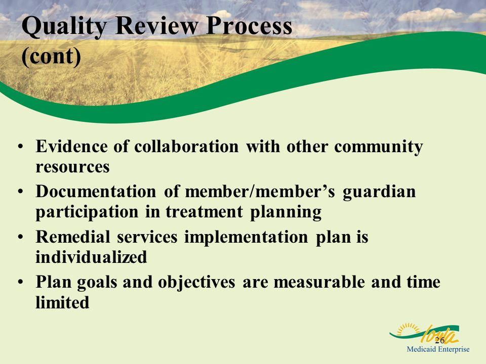 Quality Review Process (cont)