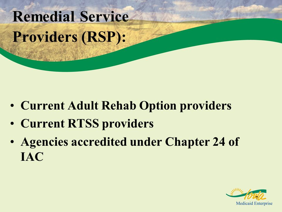 Remedial Service Providers (RSP):