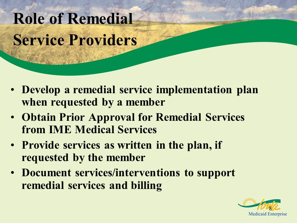 Role of Remedial Service Providers