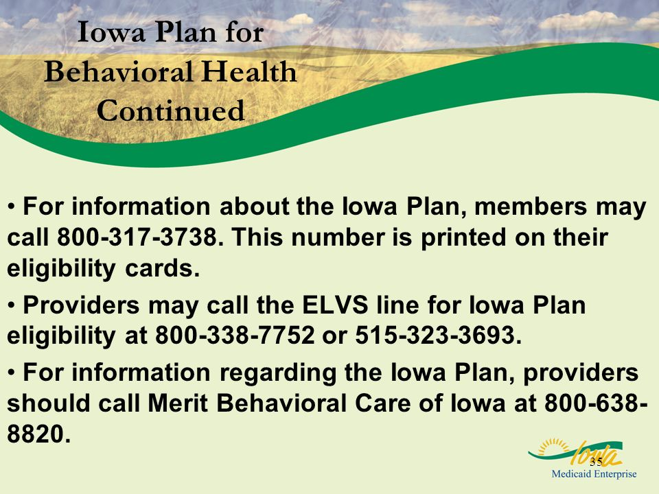Iowa Plan for Behavioral Health Continued