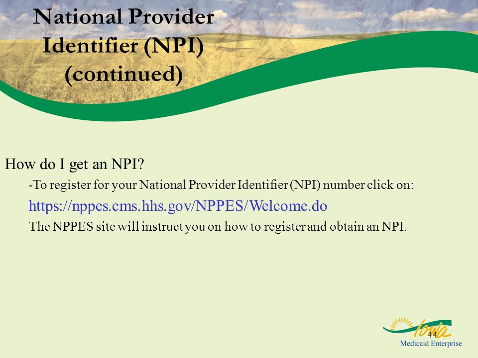National Provider Identifier (NPI) (continued)