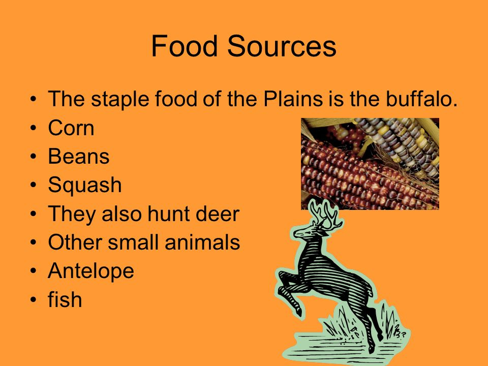 Food Sources The staple food of the Plains is the buffalo. Corn Beans