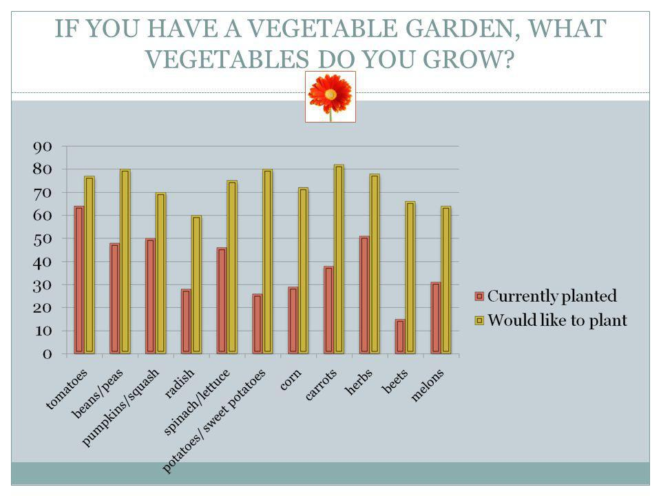 IF YOU HAVE A VEGETABLE GARDEN, WHAT VEGETABLES DO YOU GROW