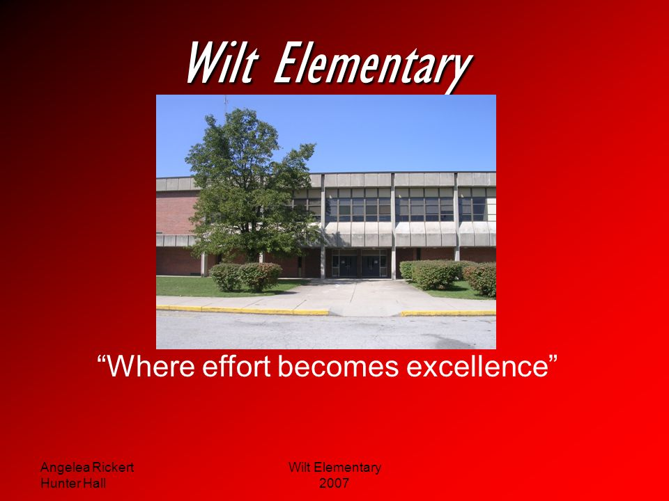 Wilt Elementary Where effort becomes excellence Angelea Rickert