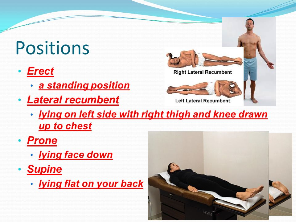 Positions Erect Lateral recumbent Prone Supine a standing position