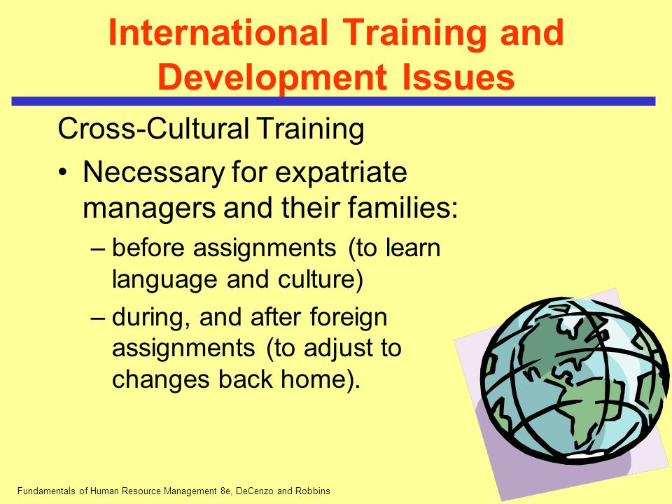 International Training and Development Issues