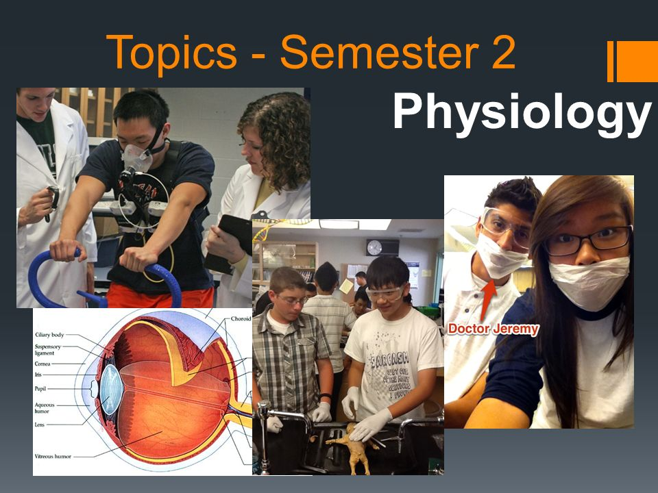 Topics - Semester 2 Physiology