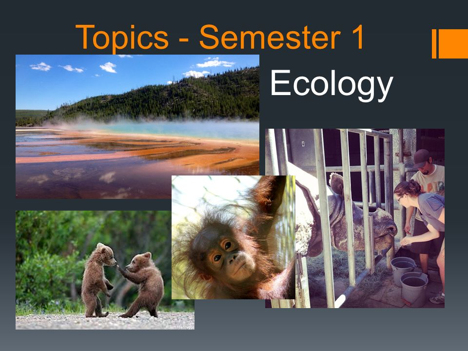Topics - Semester 1 Ecology