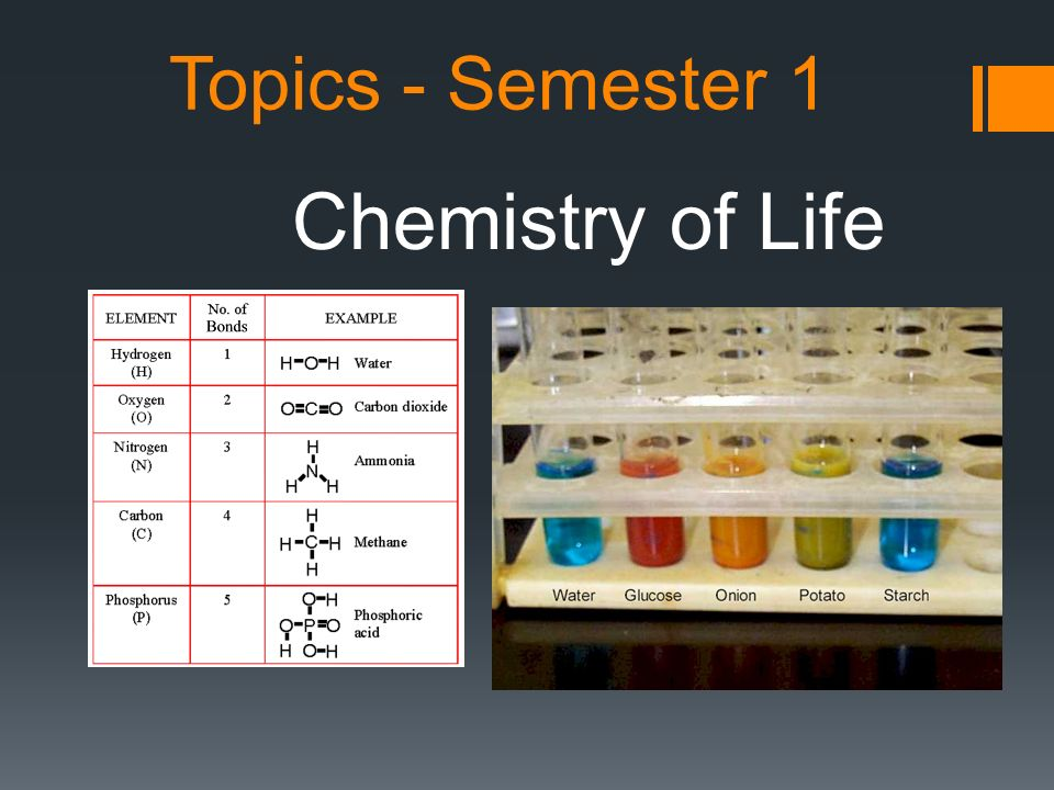 Topics - Semester 1 Chemistry of Life