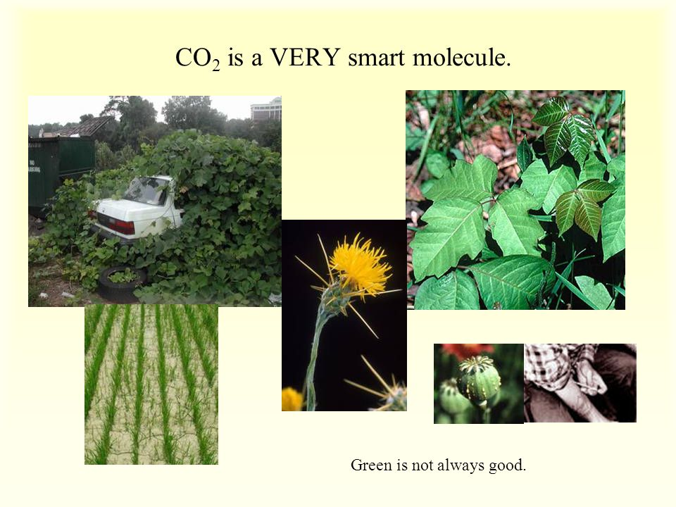 CO2 is a VERY smart molecule.