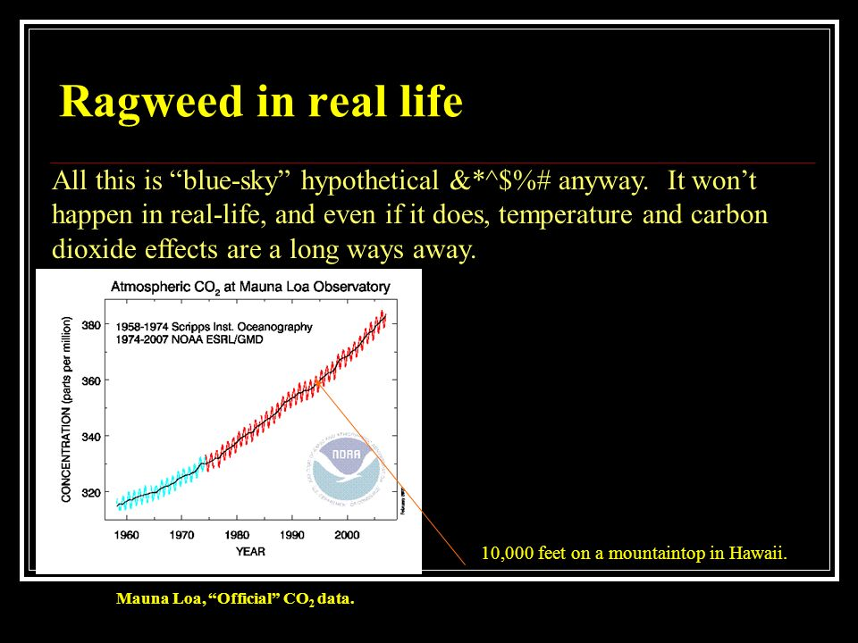 Ragweed in real life All this is blue-sky hypothetical &*^$%# anyway. It won't. happen in real-life, and even if it does, temperature and carbon.