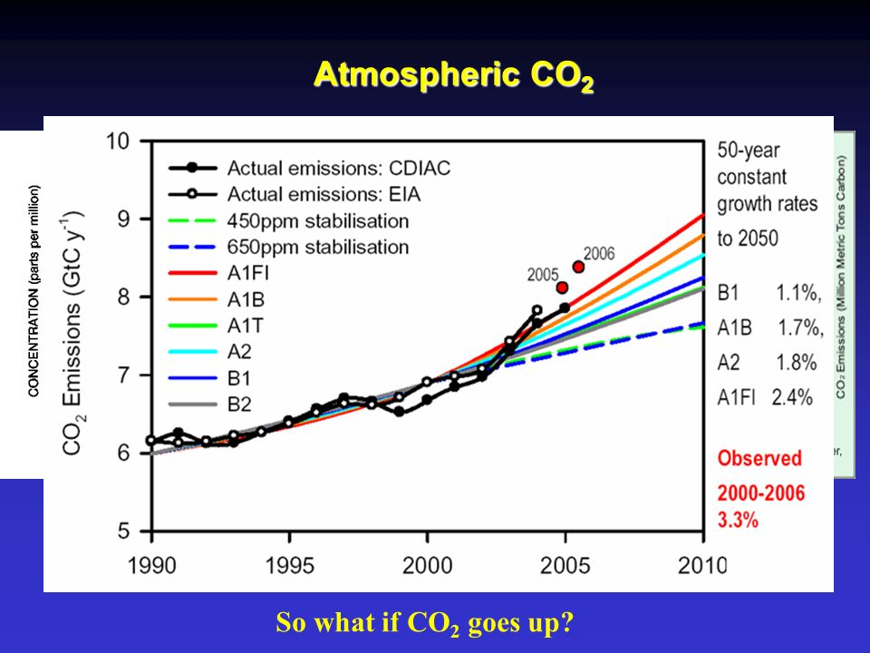 Atmospheric CO2 So what if CO2 goes up