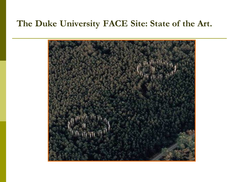 The Duke University FACE Site: State of the Art.