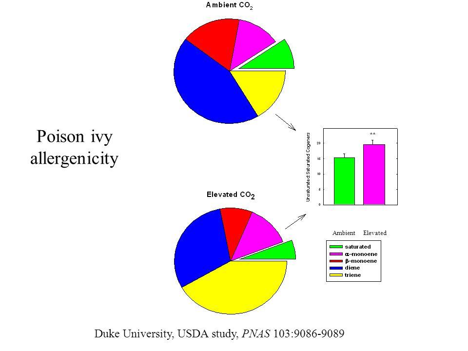 Poison ivy allergenicity