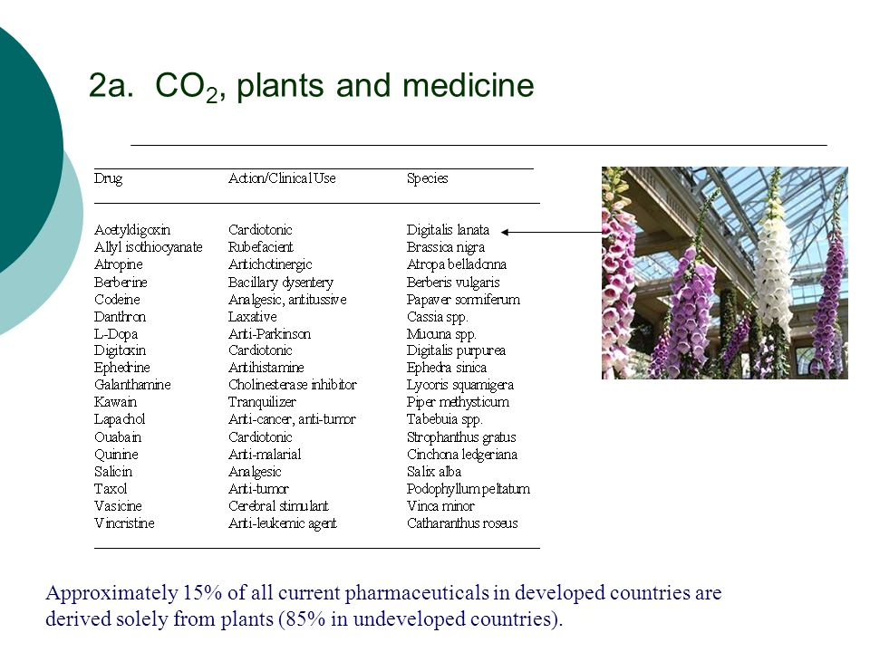 2a. CO2, plants and medicine