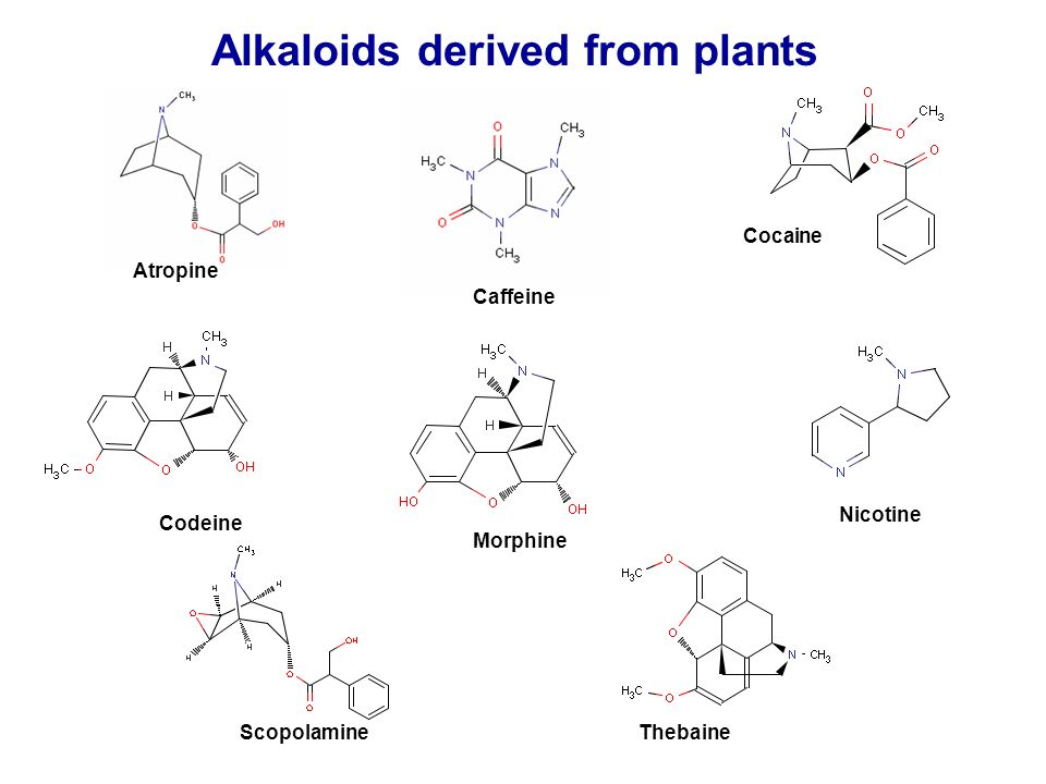 Alkaloids derived from plants