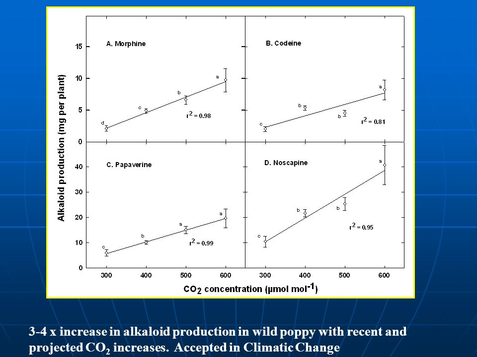 3-4 x increase in alkaloid production in wild poppy with recent and