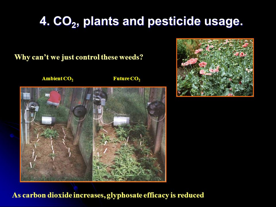 4. CO2, plants and pesticide usage.