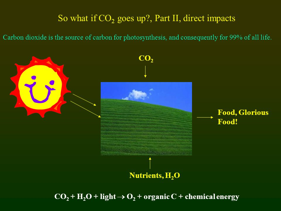 So what if CO2 goes up , Part II, direct impacts
