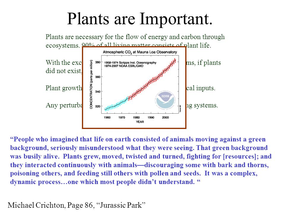 Plants are Important. Michael Crichton, Page 86, Jurassic Park