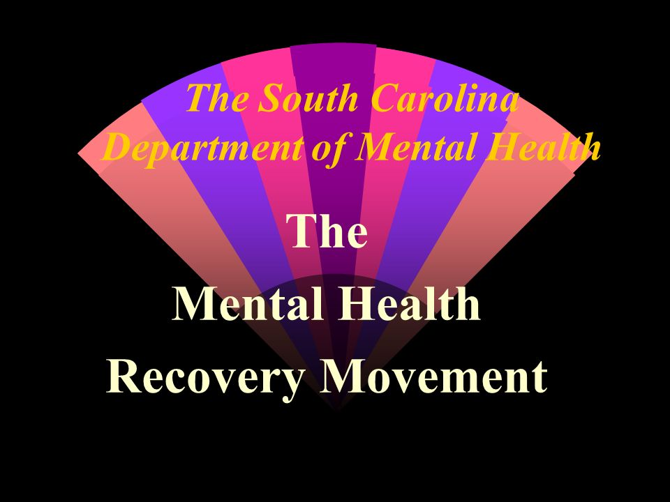 The South Carolina Department of Mental Health
