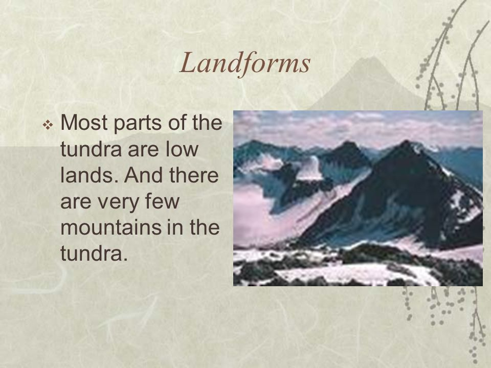 Landforms Most parts of the tundra are low lands. And there are very few mountains in the tundra.