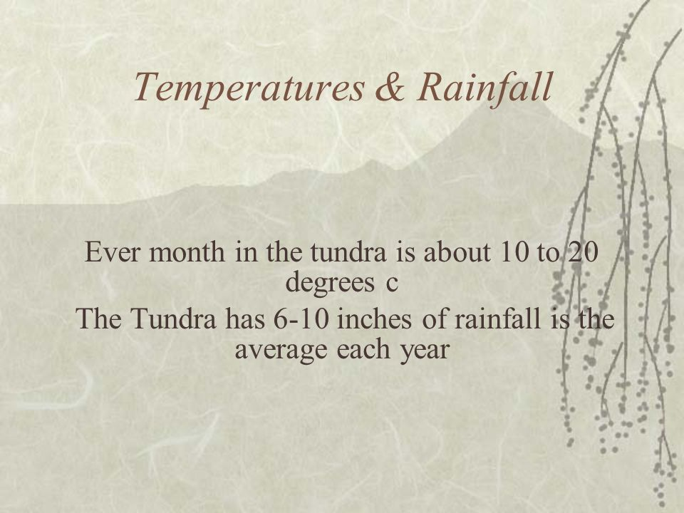 Temperatures & Rainfall