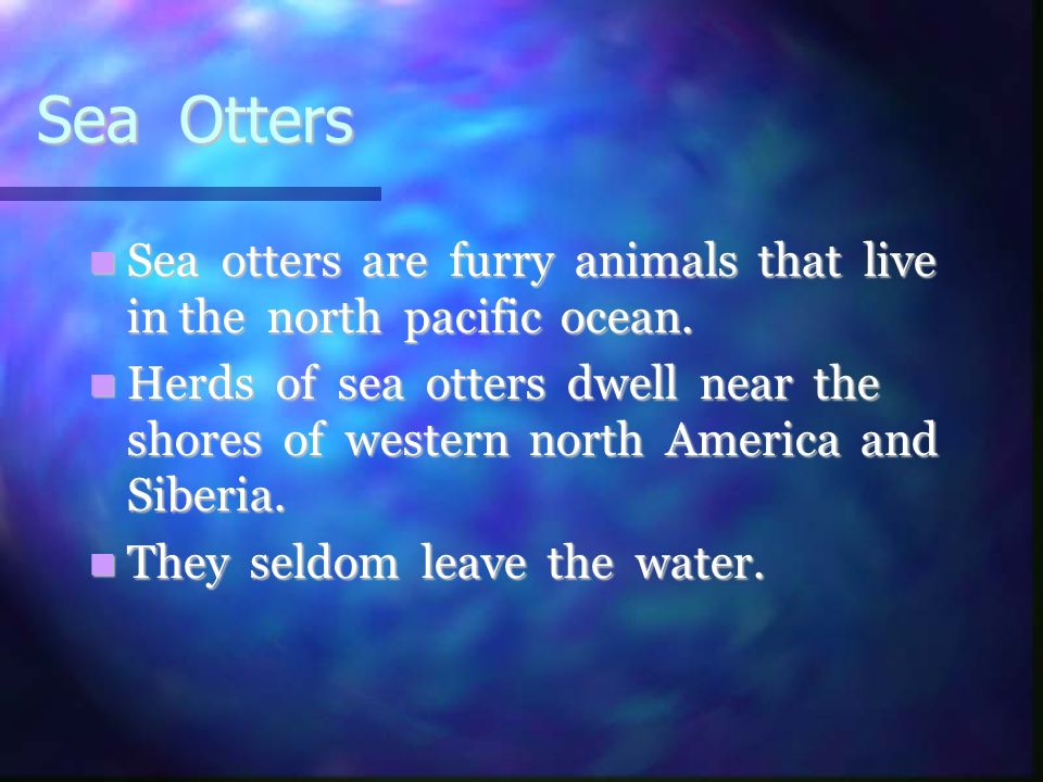 Sea Otters Sea otters are furry animals that live in the north pacific ocean.