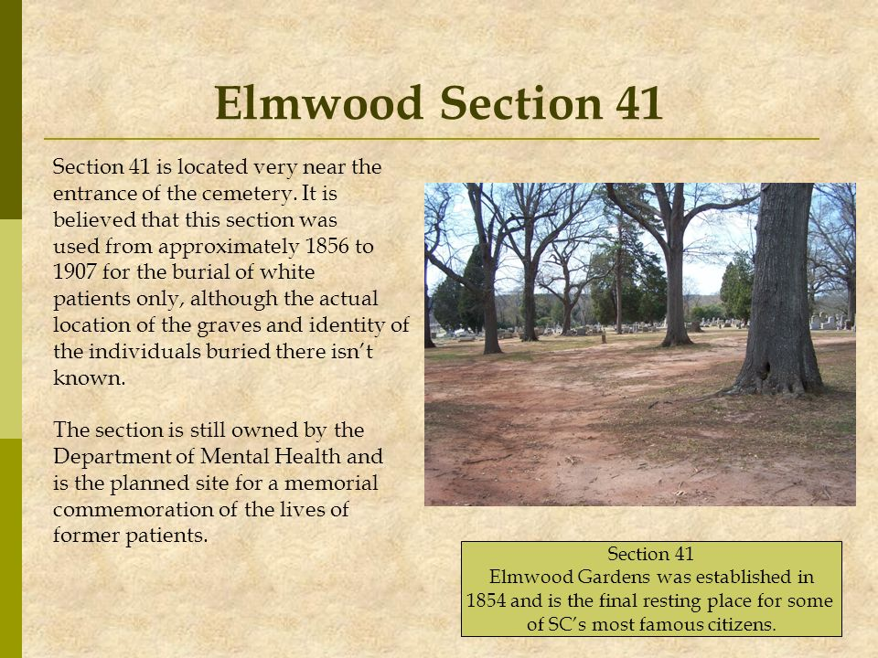 Elmwood Section 41 Section 41 is located very near the
