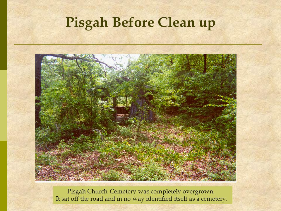 Pisgah Before Clean up Pisgah Church Cemetery was completely overgrown. It sat off the road and in no way identified itself as a cemetery.